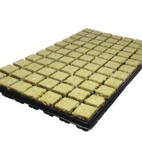 1 rock tray