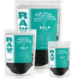 RAW = SOLUBLE Kelp 2oz