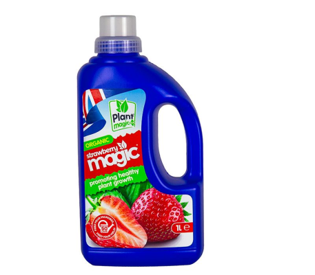 Strawberry Magic 1L