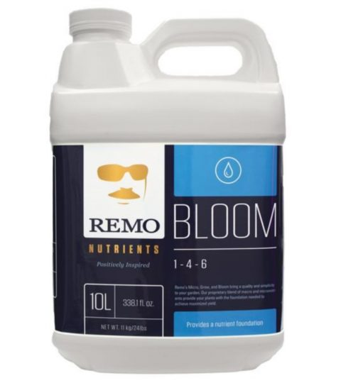 remo_bloom_700x700